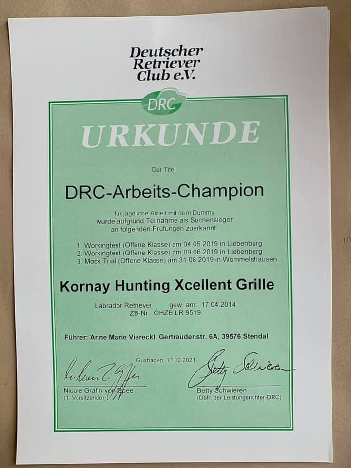 DRC Arbeitstitel